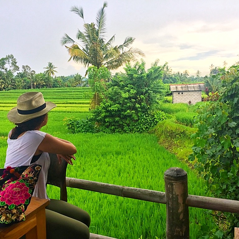 lifestyle redesign  - img 0273 - Bali Travel: Where to Eat and Drink in Ubud