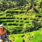 lifestyle redesign  - 685f45 811cbfb40b514646a9ba4ee60fec16ecmv2 3 150x150 - Tegallalang Rice Terraces in Ubud: Stunning Bali Beauty